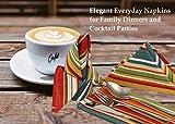 Ruvanti Tischtuch-Servietten, 6 Stück, 100 % Baumwolle, 45,7 x 45,7 cm, weiche und bequeme Baumwoll-Servietten. Mehrfarbige luxuriöse Leinenservietten für Weihnachten/Thanksgiving-Abendessen - 2