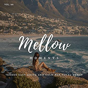 Mellow Moments - Tender Easy Going And Calm Pop Vocal Songs, Vol. 06