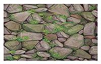 丸石の玄関マット、石で覆われた苔の小石のタイル パターンのリアルなグラフィック イラスト、装飾的なポリエステル床マット、40x60 cm