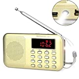 Retekess PR11 Transistor portátil Am FM Radio de Bolsillo Reproductor de MP3 Compatible con Disco USB y Tarjeta TF Linterna de Emergencia (Oro)