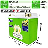FLYPOWER 12V LiFePO4 Motorcycle Start Battery 620A CCA 144Wh Lithium iron Phosphate Scooter Engine Batteries With BMS FLY20L-BS For Motorcycle ATVs UTVs ETX20L BS YTX20L-BS (Green & Right Positive)