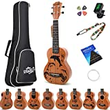Amdini Cartoon 21 inch Soprano Ukulele Sapele Small Hawaiian Guitar Set with Case Strap Tuner Picks Nylon Strings Primary Tutorial