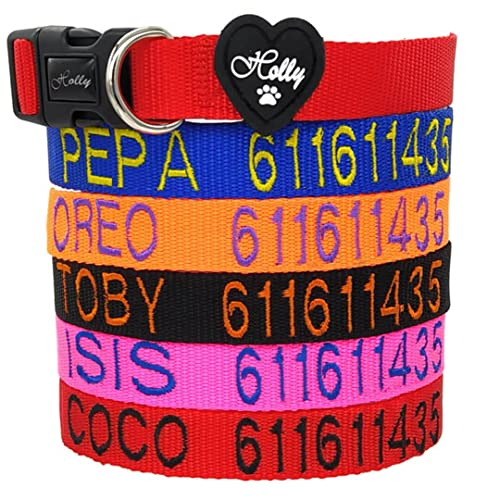 Holly Mascotas Collar de Perro Personalizado Envío 24 a 72h, Collar Bordado con Nombre y Número de Teléfono para Perros Pequeños, Medianos y Grandes. Collares Ajustable y Suave para Caminar o Correr.