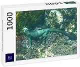 Lais Puzzle Iguana Marina Iguana delle Galapagos 1000 Pezzi