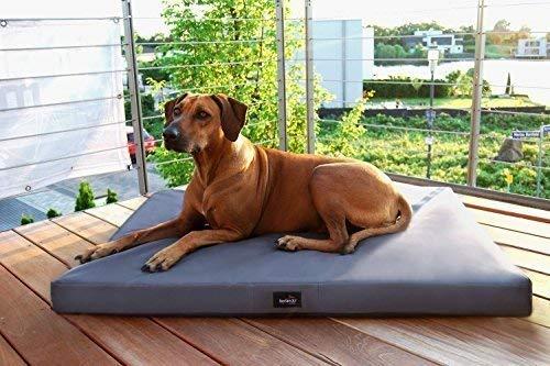 tierlando Orthopädische Hundematratze Alice VISCO aus robustem Polyester 600D |...