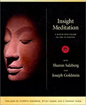 Best insight meditation course Reviews