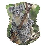 Lindo Koala Baby Tree Face Sun Dust Mask Neck Polaina Multifuncional Magic Scarf Seamless Bandana Diademas para Festivales al Aire Libre Deportes