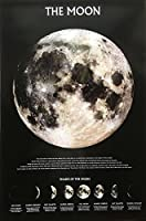 THE MOON 月 ポスター