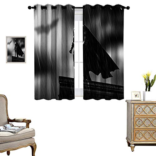 DRAGON VINES Closet Curtain Batm an, The Dark Knight, The Return of The Superhero_WPS Bedroom Living Room Kitchen Decoration Set of 2 Panels DKCL_K183xG160