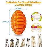 Zoom IMG-2 focuspet cane giocattolo palla con