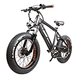 NAKTO 20 inch 300W Fat Tire Electric Bike for Adults Snow/Mountain/Beach Ebike with Shimano 6 Speed Gear and 48V 8AH Lithium-Ion Battery