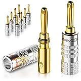 deleyCON 10x Banana Plug Chapado en Oro Atornillable para Cable de Altavoz Desde 0,75mm - 4mm & Receptor de Alta Fidelidad