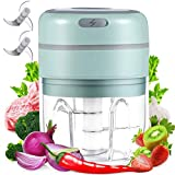 Best Garlic Choppers - digi marker Electric Garlic Chopper Mini Food Slicer Review