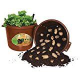 City Pickers Spud Tub Potato Grow Kit – Works Great on Decks and Patios – Low Maintenance & High Potato Yields