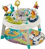 Baby Activity Centers