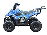Brand new 110cc ATV Fully Automatic Gas 4 Wheeler ATV for Kids - Brand New COLOR :  BLUE SPIDER