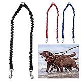 Laisse double pour chien ou animal domestique Matiere elastique reflechissante - Absorption des chocs à 360 ° - Sans nœuds Marche/entrainement avec deux chiens -  Noir