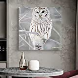 Krisyeol Owl Canvas Wall Art Painting Wall Decor Winter Owl Picture Canvas Prints Oil Painting for Bedroom Home Decor Modern Artwork Water Color Square Canvas Wall Art 12x12inch