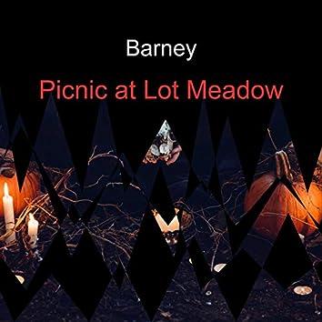 Picnic at Lot Meadow