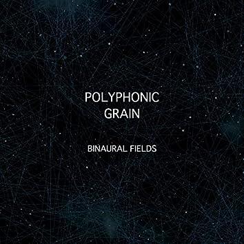 Binaural Fields