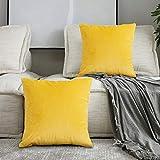 SPECOOL 2 Piezas Fundas Cojines de Terciopelo 45x45cm Fundas de Almohada Decoración con Cremallera Invisible para Sala de Estar, sofá, Dormitorio o Coche (Yellow)