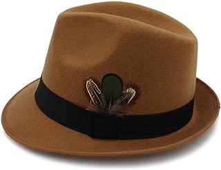 Sun Hat for men and women Hat For Men Vintage Wool Felt Fedora Jazz Hats With feather Autumn Winter Wide Brim Gentleman