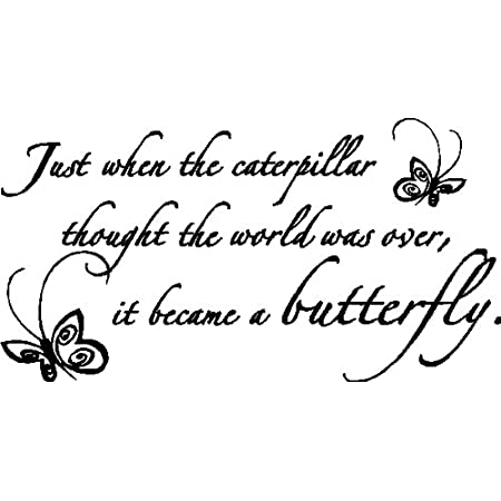 Just When the Caterpillar Thought the World was Over it Became a Butterfly Vinyl Wall Art Decal