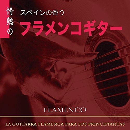 スペインの香り 情熱のフラメンコギター