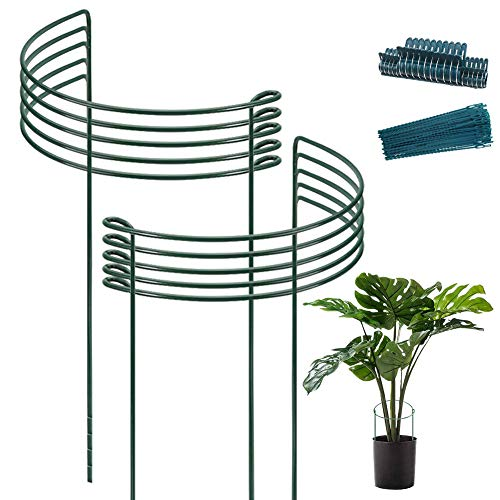 10pack Garden Plant Support Stake 10' Wide x 16' High Half Round Metal Garden Plant Support Ring Border Support, Plant Support Ring Cage for RoseFlowers Vine Tomato with 20pack Plant Clips &Plant Ties