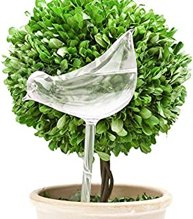 FLORO Self-Watering Bird Globe, 10x5 Inches, Plant Water Bulb, Beautiful Bird Shape Design, Hand Blown Clear Glass, Perfect Watering Stake for Indoor, Outdoor, Hanging or Patio Plants