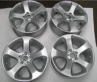 OEM Wheel Silver Powder Coating Paint (1 Pound)