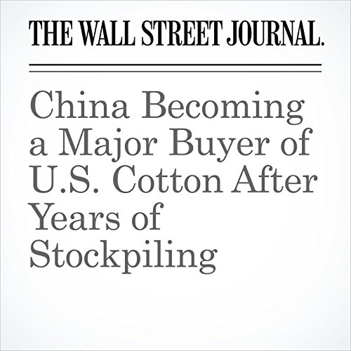 China Becoming a Major Buyer of U.S. Cotton After Years of Stockpiling copertina