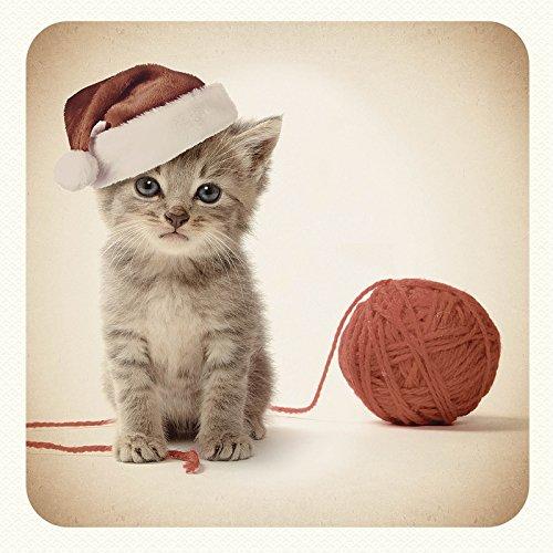Carte de Noël Motif chaton avec ficelle