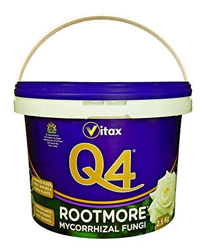 Q4 Mycorrhizal Fungi Rootmore, Tubo de 2,5 kg