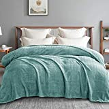 Exclusivo Mezcla Queen Size Jacquard Weave Wave Pattern Flannel Fleece Velvet Plush Bed Blanket as Bedspread/Coverlet/Bed Cover (90' x 90', Celadon) - Soft, Lightweight, Warm and Cozy