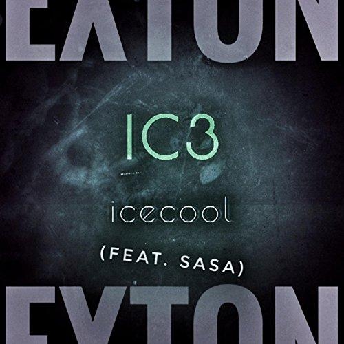 Icecool (feat. Sasa)