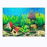 HM & CL1 Pcs Pecera Pintura de Fondo Papel Tapiz de Doble Cara 3D pecera paisajismo Pintura Decorativa (60 * 122 cm) B