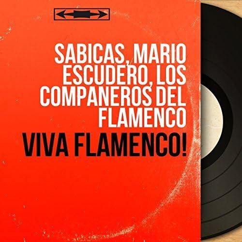 Sabicas, Mario Escudero, Los Compañeros del Flamenco