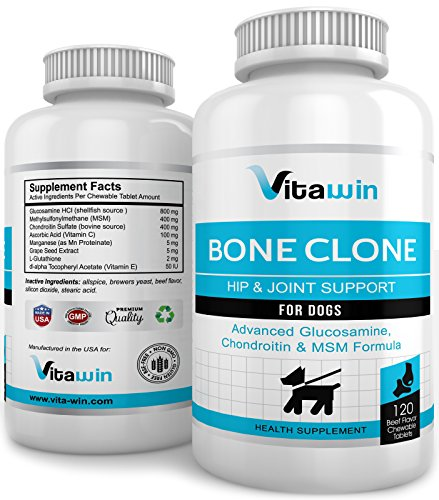 Advanced Glucosamine for Dogs 800MG - 120 Chew Tabs for Hips & Joints - Plus Chondroitin 400mg + MSM 400mg - Best Value per tablet on Amazon - Vet Approved Double Strength Formula - Maximum Mobility Pain Relief - Nutritional Dog Supplement