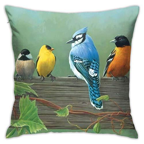 QUEMIN Fundas de almohada decorativas de pájaros coloridos, 1 paquete de funda de almohada ultrasuave para sofá, silla, sofá, dormitorio, coche, 22 x 22 pulgadas