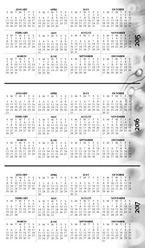 House of Doolittle 2015 - 2016 Academic Year Weekly Planner Assignment Book, Black Cover, 5 x 8 Inches (HOD27502-16) Photo #7