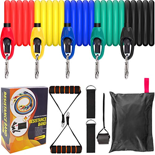 Eleclink Resistance Bands Set, Fitness Resistance Bands Set with 5 Fitness Tubes, Handles, Door Anchor, Legs Ankle Straps, Physical Therapy, Workout Guides for Men Women