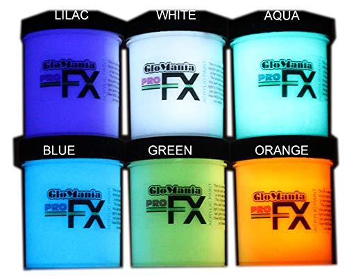 6 Color Set Glow in The Dark Paint Luminous Glowing 1/2oz- Sampler
