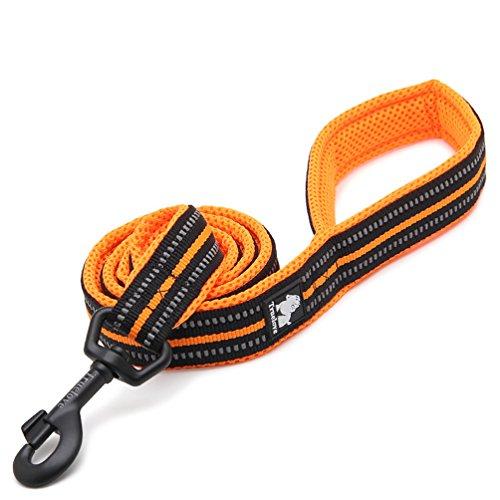 PENTAQ 200cm lang 2cm breite Hundeleine Seil 3M reflektierende Streifen weiche und atmungsaktive Mesh mit starken Stahl Haken Nachtzeit Hund zu Fuß Leine (Orange)