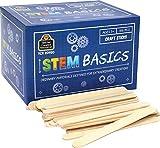 STEM Basics: Craft Sticks - 500 Count