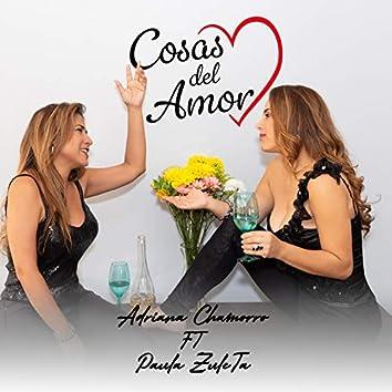 Cosas del amor (feat. Paula Zuleta)