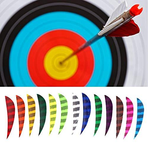 Alomejor Flecha De Pluma De Tiro con Arco De 4 Pulgadas Práctica Fletching De Pavo Flechas De Objetivo