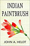 Indian Paintbrush (Carson Chronicles Book 3)