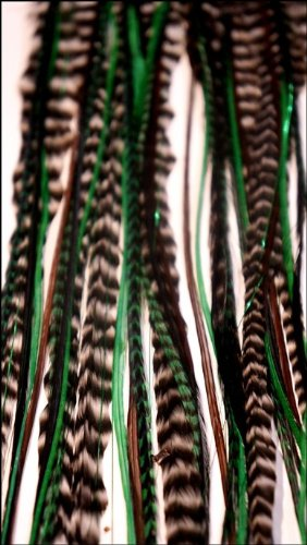 grizzly-extensions Ressort easyin Forest Big avec Gleam Shine pour cheveux bruns