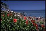486064 Lanzarote Puerto Del Carmen Spain A4 Photo Poster